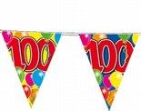 100-jaar-Vlaggenlijn-10-meter