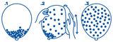 Confetti bont Ballonnen, 6 stuks_
