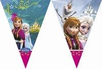 Frozen Disney Anna en  Elsa Vlaggenlijn, 2 meter