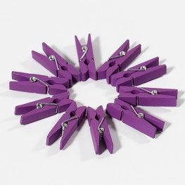 Paars:violet Wasknijpers mini, 20 stuks