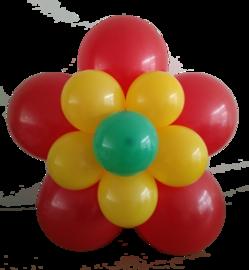 Ballonnenbloem DIY, rood/geel
