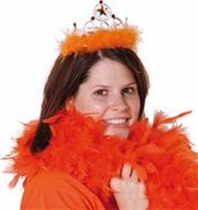 Kroontje met oranje veren