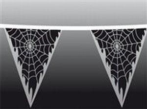 Spinnenweb Vlaggenlijn